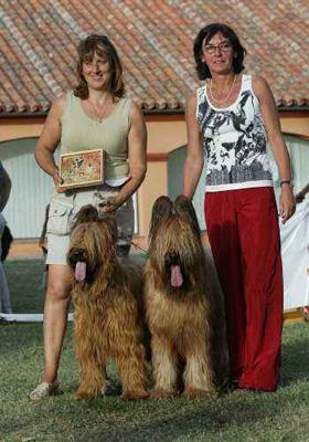 Mejor pareja de la Monográfica Española del Pastor de Brie 2006
