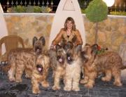 Conchi Valentí con perros Dasilva, Pastor de Brie
