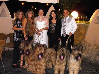 Perros Participantes en la Monográfica Española del Pastor de Brie con asistentes a la boda