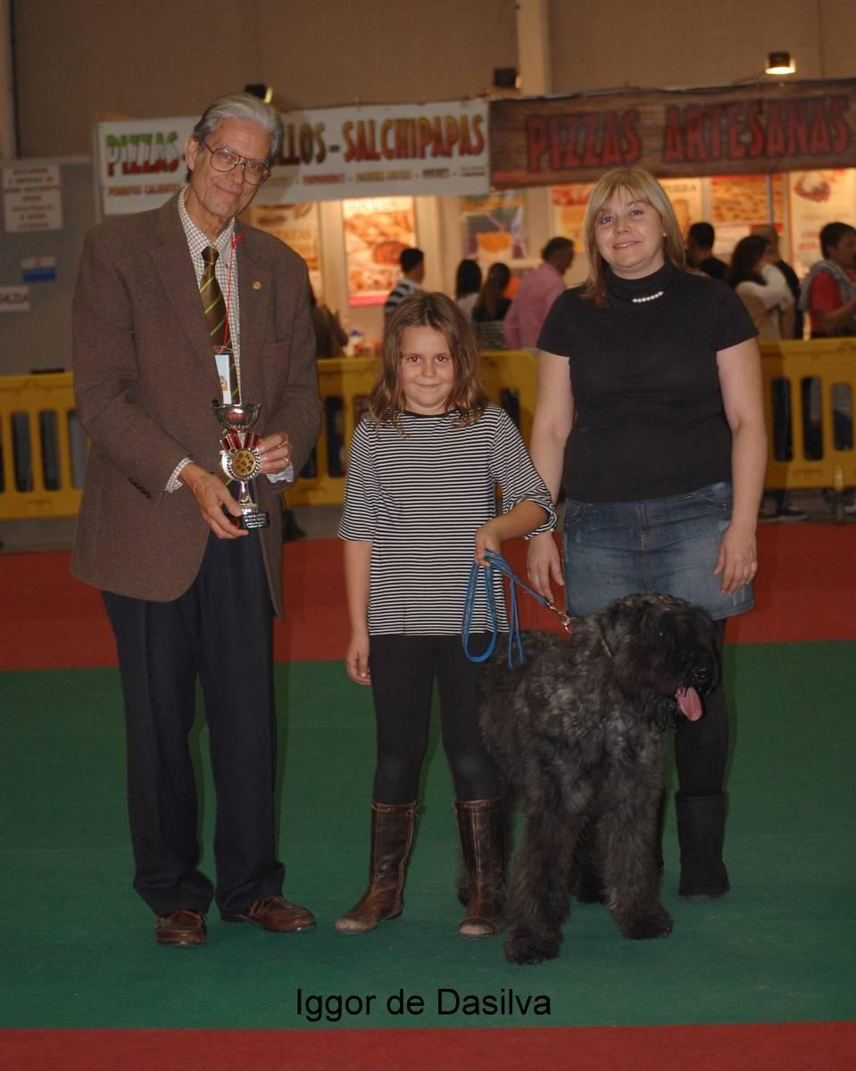 Monográfica Española 2013, Iggor de Dasilva, e la Clase Cachorro, fue ganador de Mejor Cachorro de la Monografica