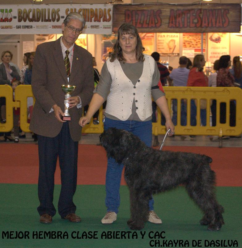Monográfica Española 2013, Kayra de Dasilva, ganadora de la clase Abierta (CAC).