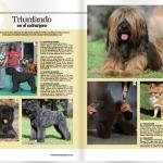 Revista el Mundo de Perro, triunfando en el Extranjero, Perros Dasilva